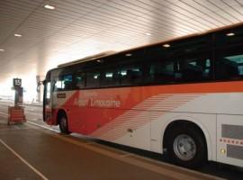 【基礎知識】關東地區:從機場進入東京市區資訊