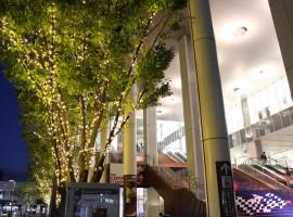 【AEONMALL京都】京都市內紅葉勝地最近的購物中心!