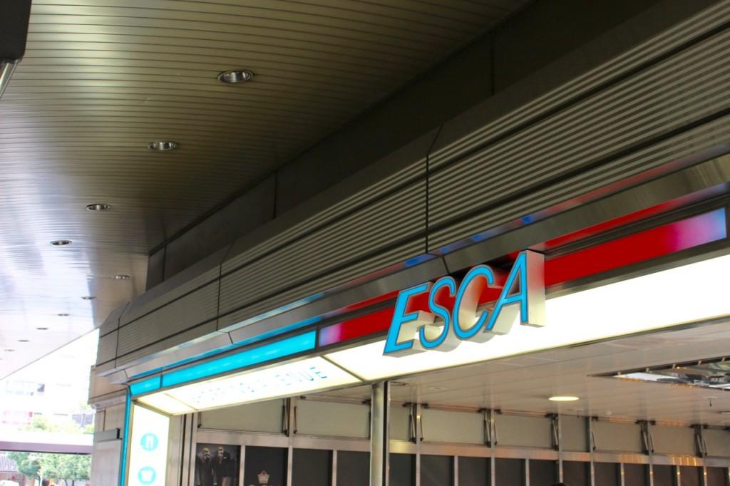 ESCA1 - 31