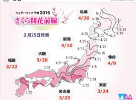 2016櫻開花預測【隨時更新】