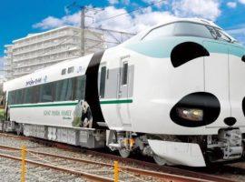 【期間限定】JR西日本與和歌山ADVENTURE WORLD合作推出熊貓列車!