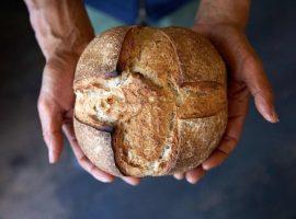 【東京必去】第12回「青山麵包祭」集結來自全日本90家嚴選麵包店