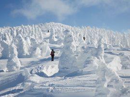 【北秋田】相約看樹冰!世界奇觀必訪聖地 一生難忘的旅行