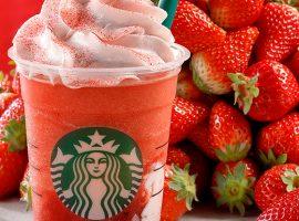 【星巴克必喝】草莓霹靂多星冰樂新品登場,代官山星巴克草莓溫室店期間限定OPEN!