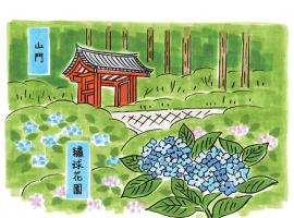 【京都】在地達人規劃12條私房早鳥路線,體驗京都生活從一早開始!