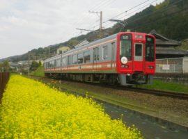 【大阪旅遊】南海電鐵套票 春遊高野山的絕佳行程