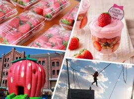 草莓控的夢幻樂園,2月一定要去的「橫濱草莓節」
